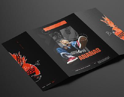 ANANAS Brochure