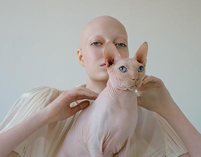 Cat Grace
