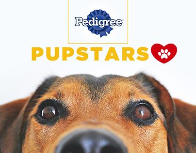 Pup Stars- Winner Gold - Wave Festival