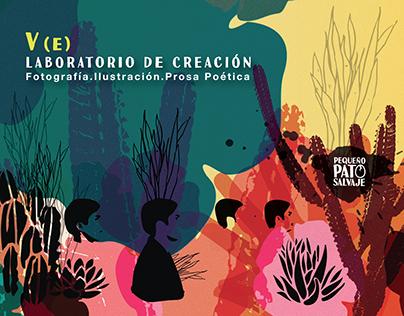 Proyecto Editorial Pequeño Pato Salvaje