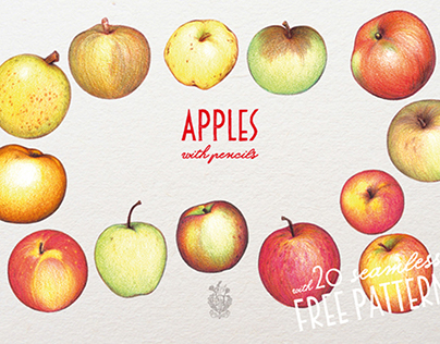 Apples With Colour Pencils