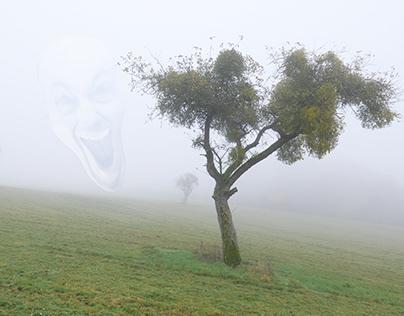 Creatures in Fog