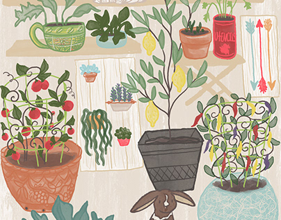 What I Learned From the Pandemic - Peace in Plants