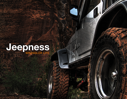 JEEPNESS project