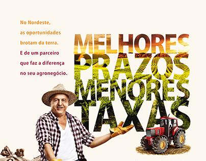Banco do Nordeste - Anúncio Agronegócio