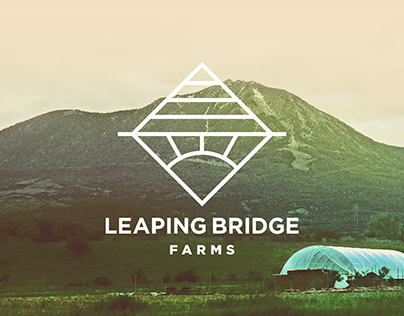 Leaping Bridge Farms / Visual Branding