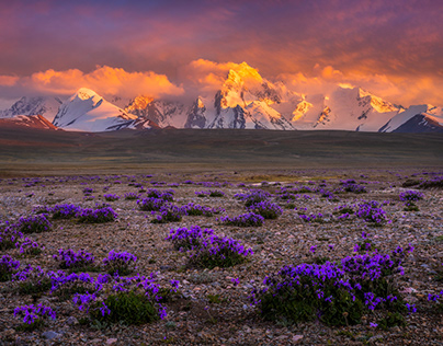 Kyrgyzstan - The Wild & Remote