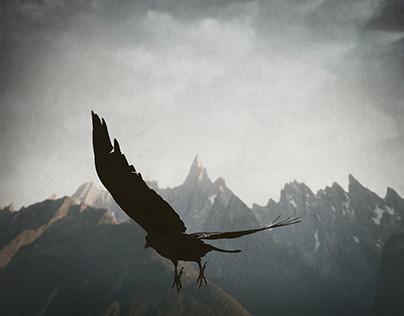 Raven - Take Off