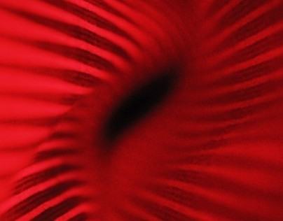 EPILEPSI - ABSTRACT FINE ART PHOTOGRAPHY