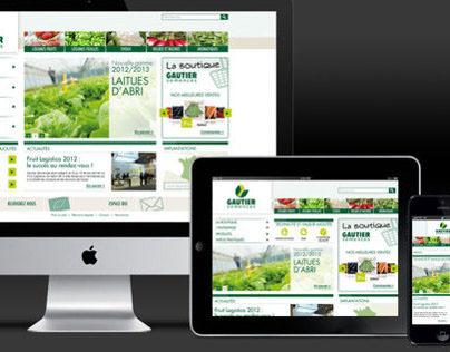 Gautier websites - Corporate & E-commerce