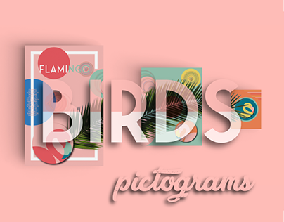BIRDS || Pictograms