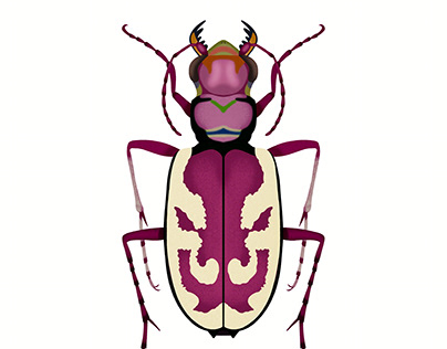 Blowout Tiger Beetle