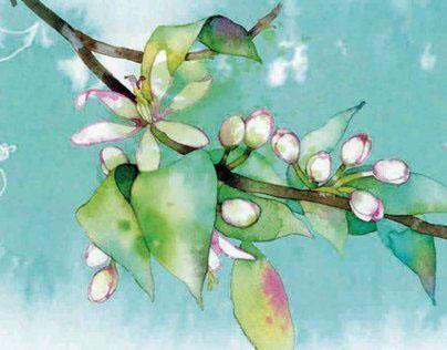 H. BAZAAR - Angel Schelesser, Perfume
