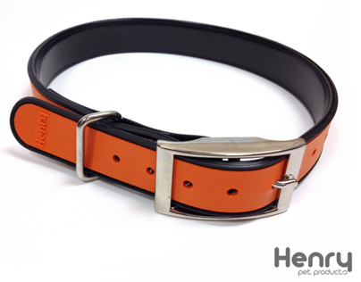 Magnetic Dog Collar Canada