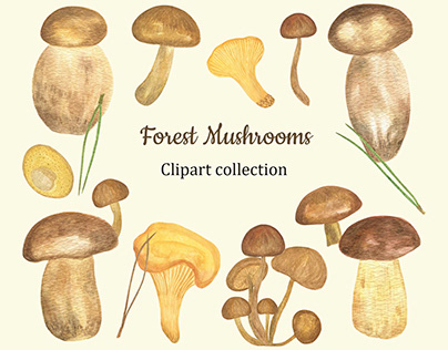 Forest Mushrooms clipart