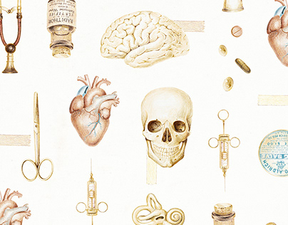 Medical illustration and branding