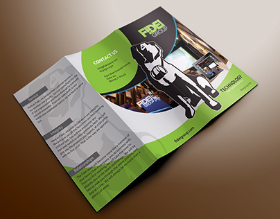 Fidei Group Incorporated brochure design