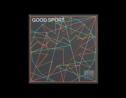 The Air On Earth - Good Sport