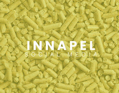 Social Media Innapel