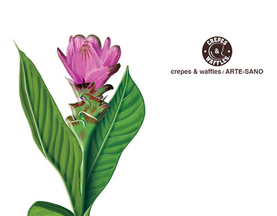 Botanic illustrations for the restaurant crepes&waffles