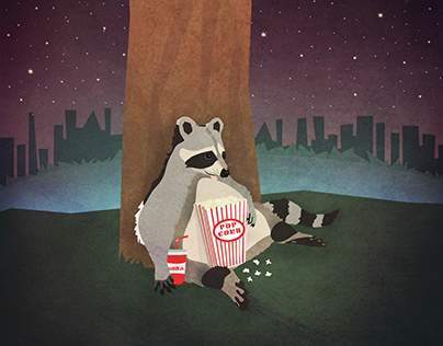 Raccoon Snacking in the Night