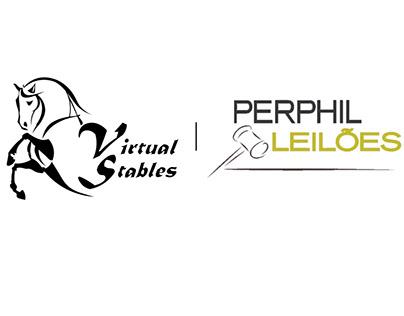 Leilão de Potros de Futuro - Virtual Stables