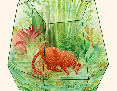 Zoo Terrarium Series
