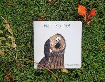 The Seeing Hands Project : No! Toto, No!