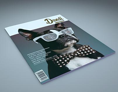 dandi magazine