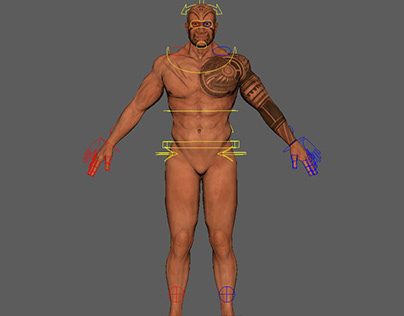 Human Rig Thesis