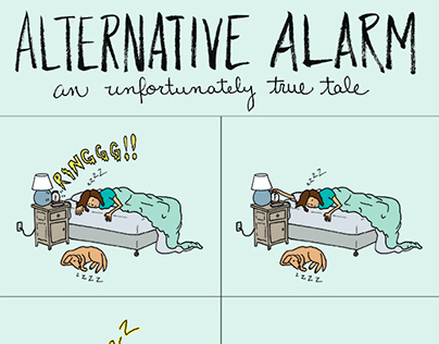 Alternative Alarm