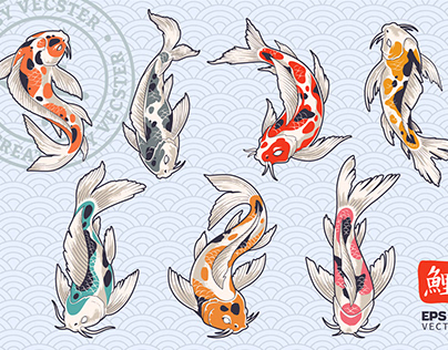 Koi Fish Vector Set