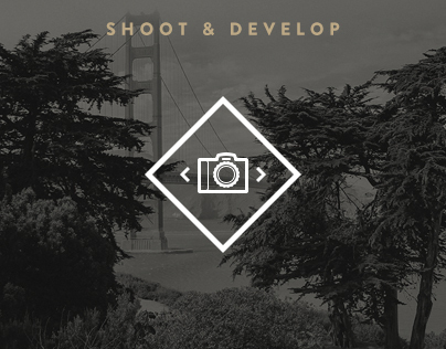 Shoot & Develop