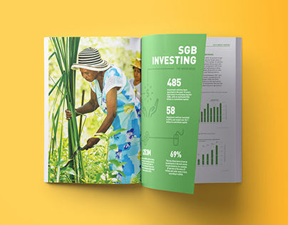 ANDE Impact Annual Report // Print