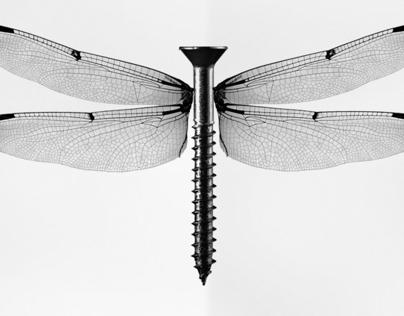 Illustrations - Isidro Ferrer Exhibit @Anatome Milano