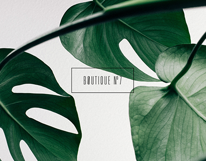 Boutique Nº7