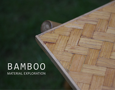 BAMBOO - Material Exploration