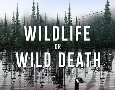 POSTER - WILDLIFE OR WILD DEATH