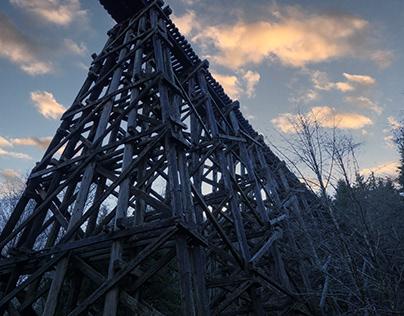 Bones of the Bridge
