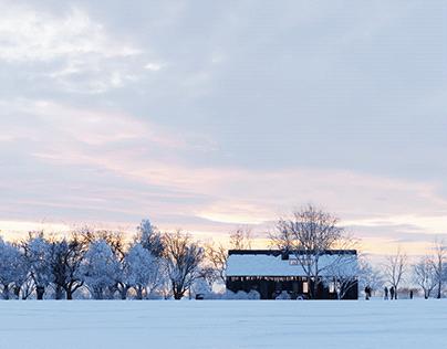 The new barn house