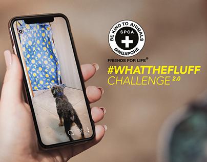 #WHATTHEFLUFFCHALLENGE2.0 (SPCA)
