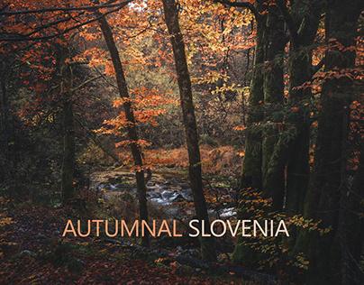 AUTUMNAL SLOVENIA by Stian Klo.