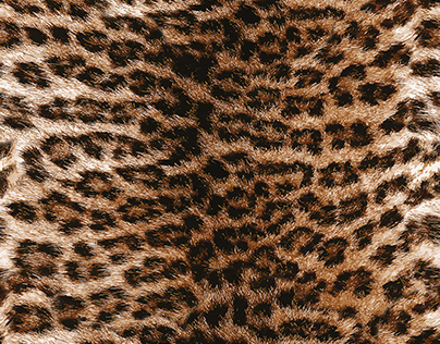 Realistic Fur Leopard Pattern