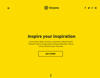 Tinyone Onepage Template (PSD+HTML)