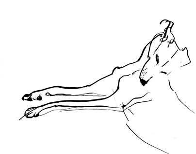 Dogs - linear sketches