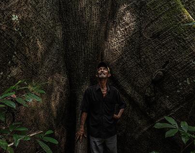 Amazonian Tales