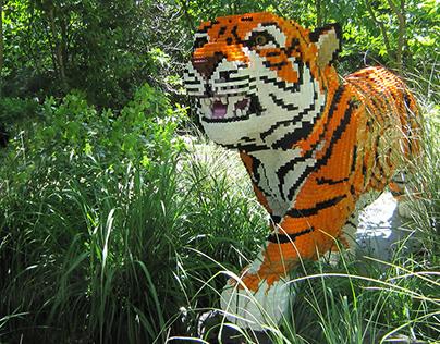 Bronx Zoo - LEGO Zoofari