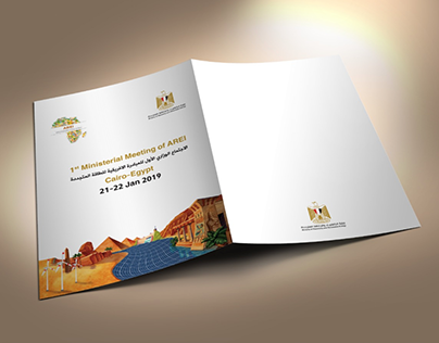 Africa Renewable Energy Initiative (AREI)