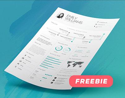 FREEBIE - Infographic Resume/Cv Volume 8