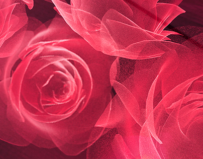 Airwick / Roses